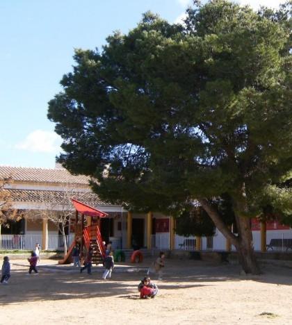 Los alumnos del CEIP Costa i Llobera están adscritos al IES Sant Marçal
