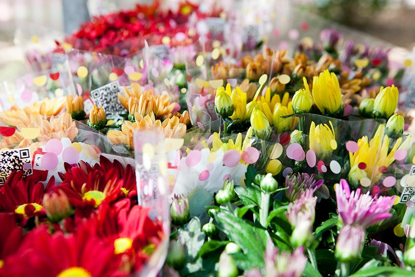 La variedad de flores y plantas que encontramos en este invernadero satisface la demanda de la clientela más exigente FOTO Sendra