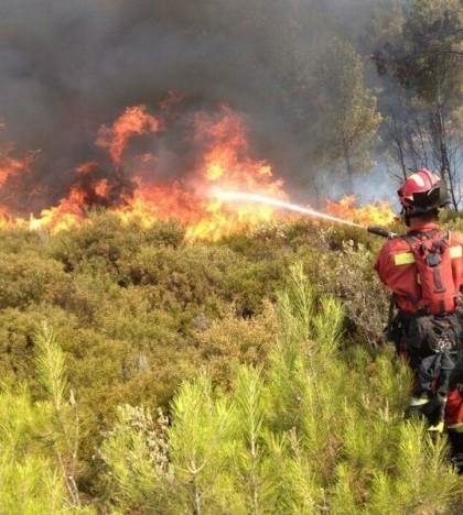 Incendio de Andratx (imagen de UME)