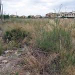 Desbroce limpieza solar calle Lliri (Antes)