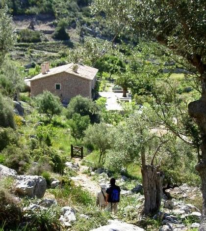 Una de las propuestas consiste en visitar el refugio dels Tossals Verds.
