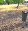 suciedad en el parque
