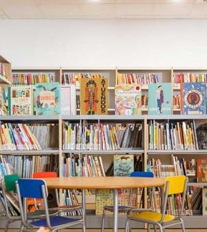 Biblioteca-pont-dinca-1