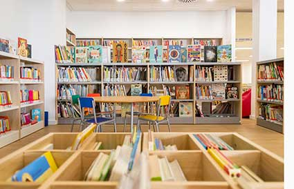 Biblioteca-pont-dinca-2