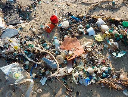 Contaminacion_plasticos