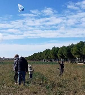 Parque-fotovoltaico-Son-Bonet-1