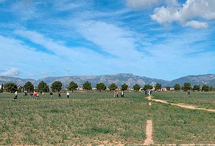 Parque-fotovoltaico-Son-Bonet-2